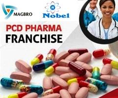 Magbro Healthcare top pcd company in Ludhiana Punjab